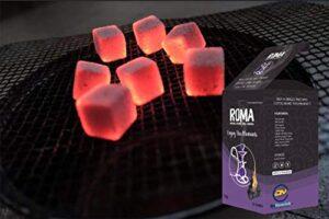 ROMA Carbón de coco natural 1 kg/ 72 cubos. Sin productos químicos, si...