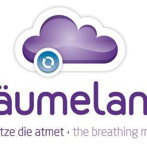 Träumeland T030307 - Colchón infantil 36x78cm