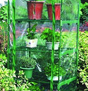 Hamble Distribution - Invernadero pequeño con 4 Alturas