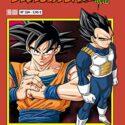 Dragon Ball Serie roja nº 234 (vol5): 222 (Manga Shonen)