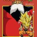 Dragon Ball Serie roja nº 238 (vol6): 222 (Manga Shonen)