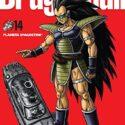 Dragon Ball nº 14/34 (Manga Shonen)