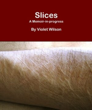 Slices: A Memoir-in-progress (English Edition)