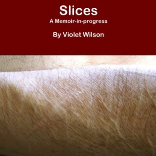 Slices: A Memoir-in-progress (English Edition)