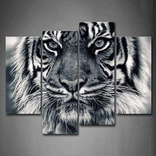 First Wall Art Cuadro de Pared con diseño de Tigre Blanco y Negro con ...