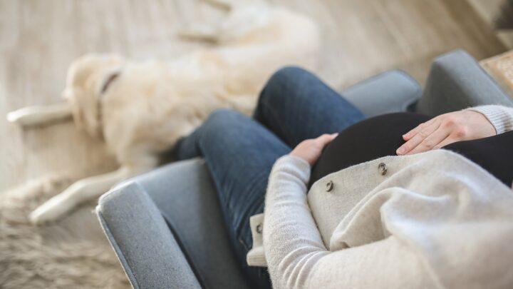 Almohadas para Embarazadas, Las Mejores para Embarazo y Lactancia